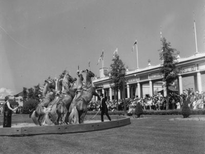 Christiansen's show horses performing at Playland, n.d. (PPL-275)