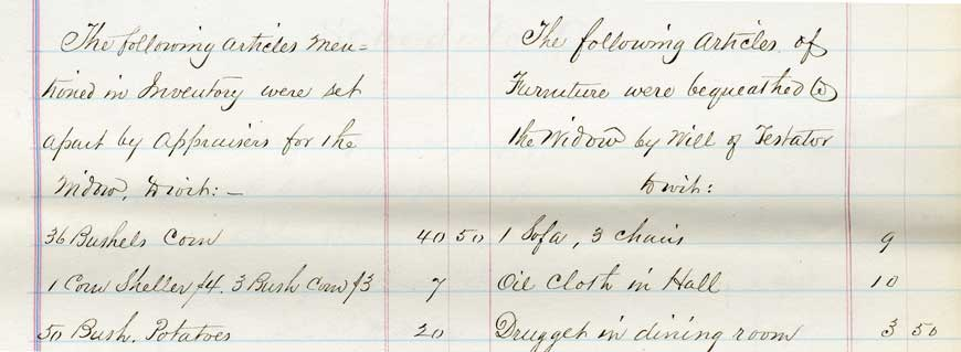 Portion of an estate inventory from 1864. (A-0141(156)L, file 1863-180). Click on picture for full image.